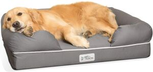 Pet fusion Ultimate dog bed and lounge