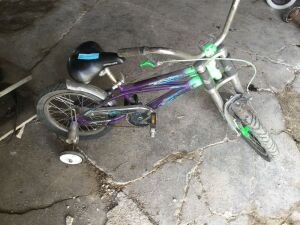 Child Size Bike with Training Wheels