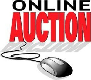 Online Auction Terms